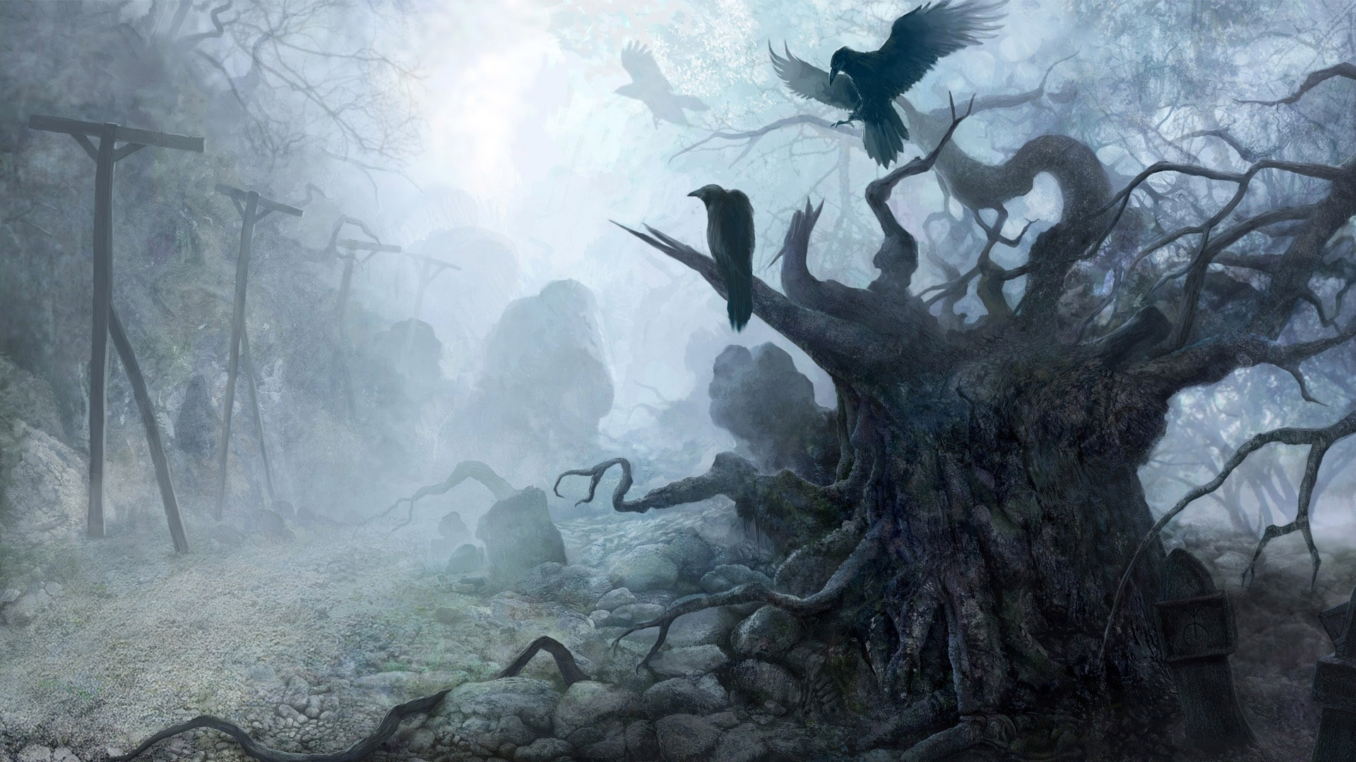 crows_fog_haze_tree_death_21730_1920x1080
